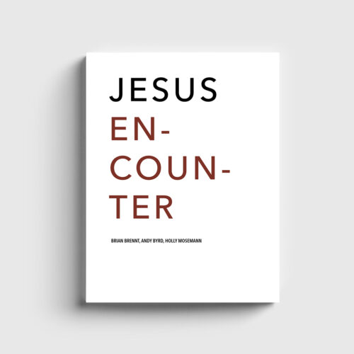 Jesus Encounter Book